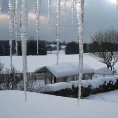 icicles insurance